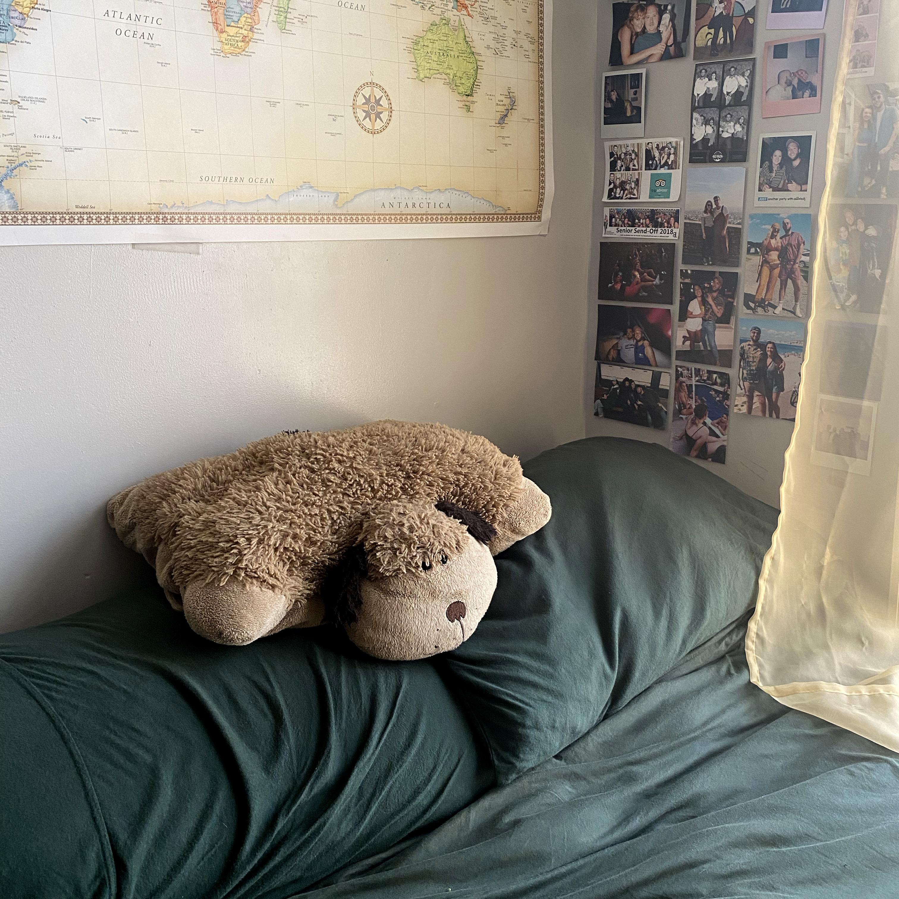Tyler's Pillow Pet