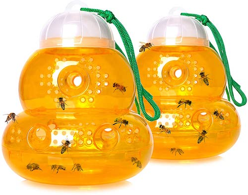 Stingmon 2 Pack Hanging Outdoor Wasp Trap