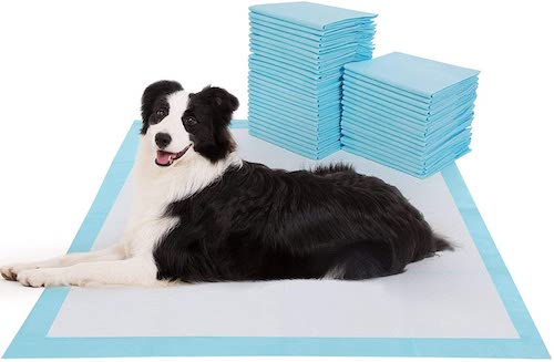 BESTLE Extra Large Pet Training and Puppy Pee Pads