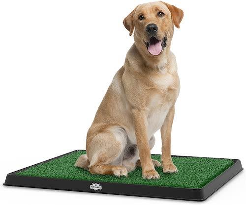 PETMAKER Artificial Grass Puppy Pad