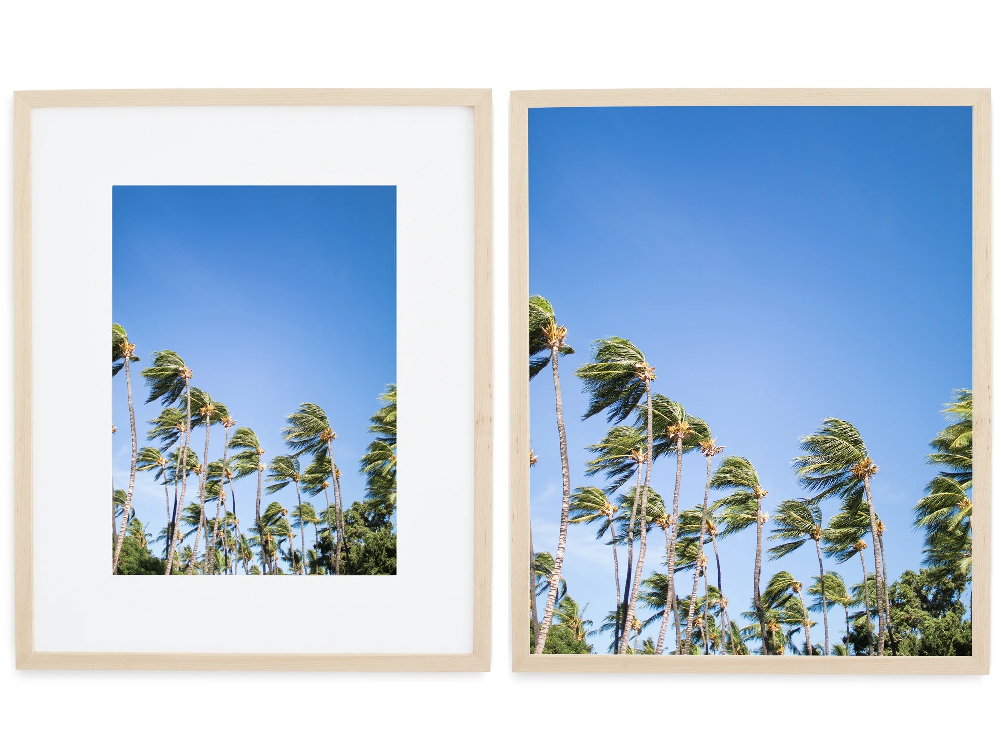 matted vs non-matted photo