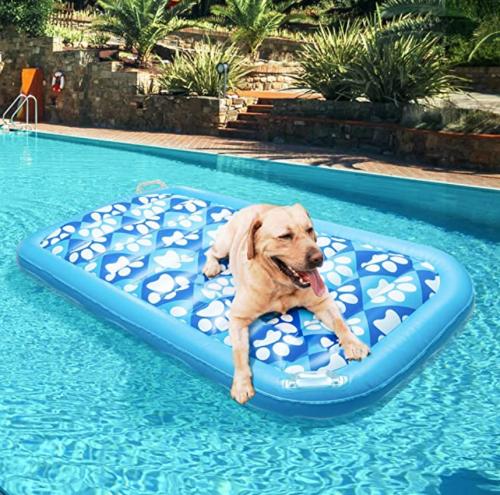 Expawlorer Inflatable Dog Pool Float