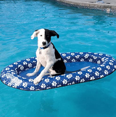 SwimWays Paddle Paws Dog Float
