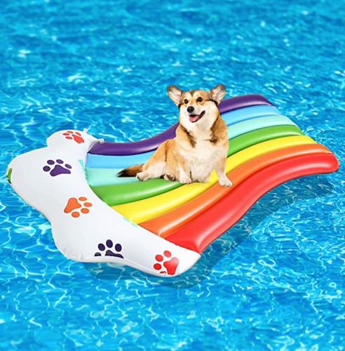 Scenereal Inflatable Dog Pool Float