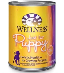 Wellness Complete Health Wet Food, best puppy food