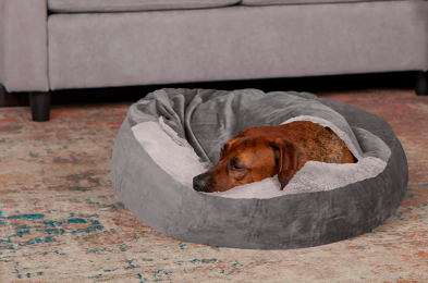 calming-dog-bed