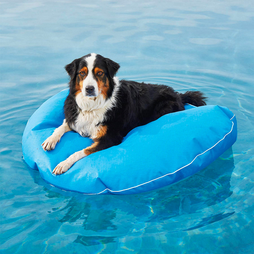 frontgate dog pool floats