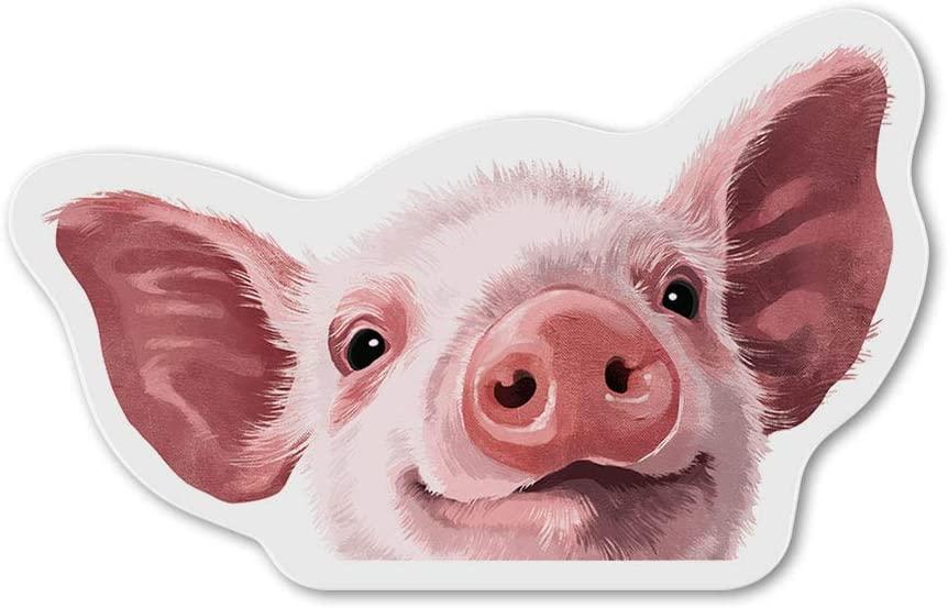 Baby Pig Magnet