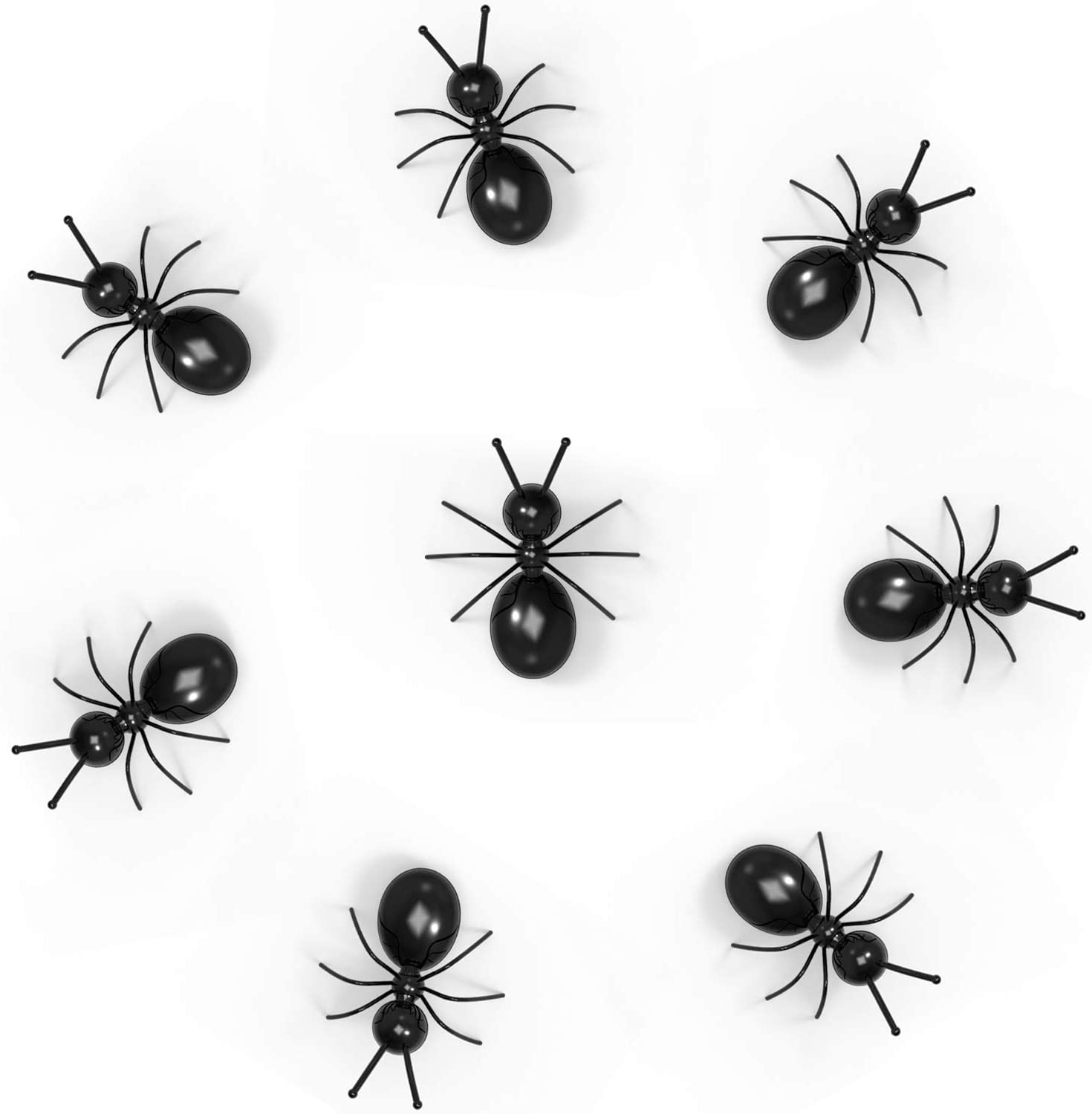 Ant Magnets