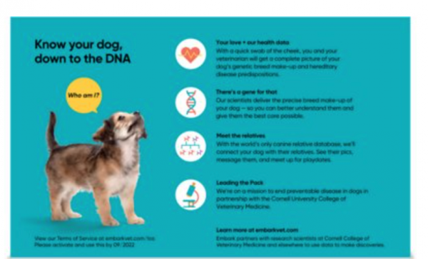 Embark Breed & Health DNA Kit for Dogs