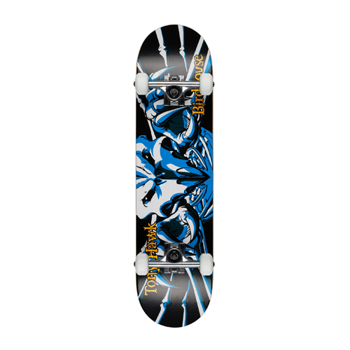 Birdhouse Beginner Grade Tony Hawk Complete Skateboard with Falcon design; best skateboard for beginners
