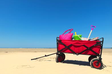 beachcartimage