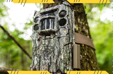 trail-cameras-featured-image
