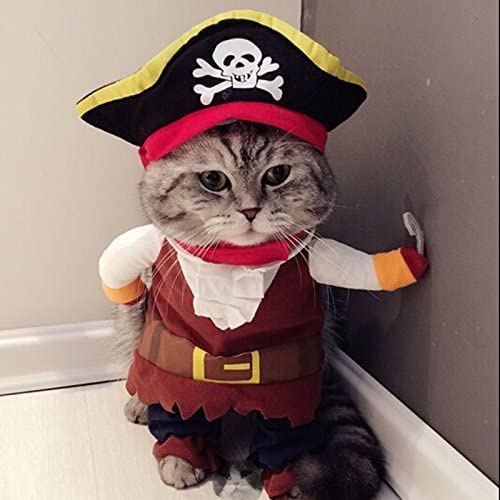 Idepet Pirate Costume for Cats