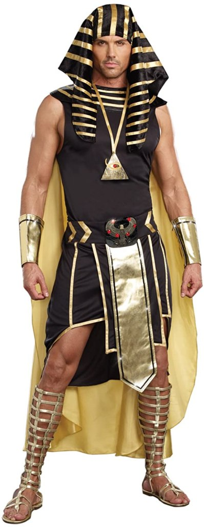 Dreamgirl Mens King of Egypt King Tut Costume