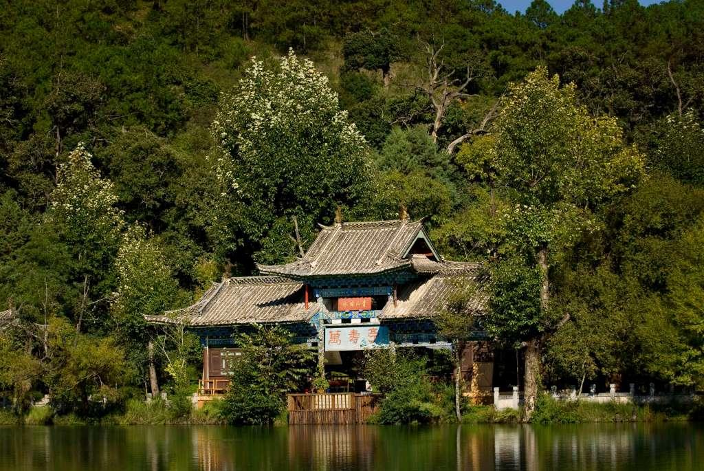 Banyan Tree Black Dragon Pool, Work from Paradise