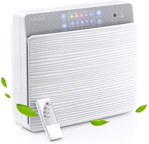 best air purifier for smoke missue hepa