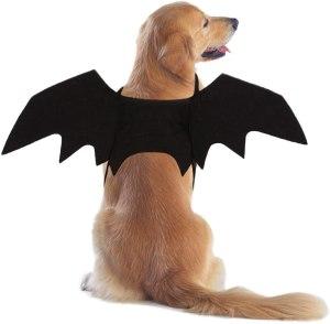 dog Halloween costumes rypet bat