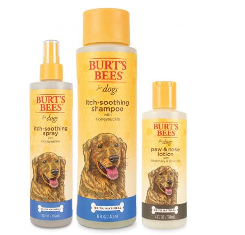 Burt's Bees Bundle Dog Grooming Kit