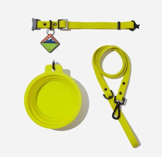Eletric Qalo Leash, Collar and TraQ Dog Tag Set