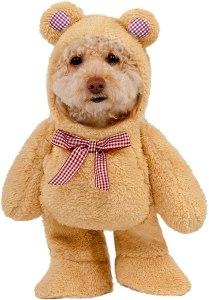 walking teddy bear pet suit