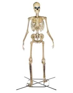 home accents holiday skeleton lifeeyes figure yard, best halloween yard decorations