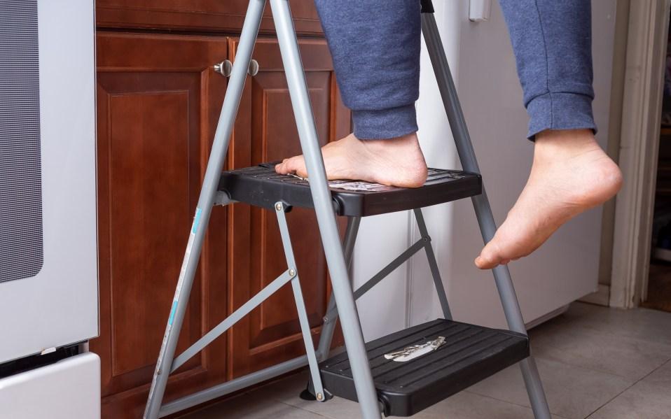 Best Step Ladders