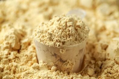 Scoop of Pea Vegan protein powder. Sport nutrition.