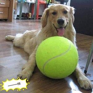 banfeng giant dog tennis ball