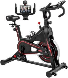 DMASUN indoor cycling bike, budget exercise bikes