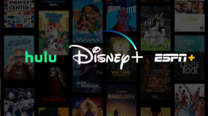Disney Plus bundle, Disney Plus subscription