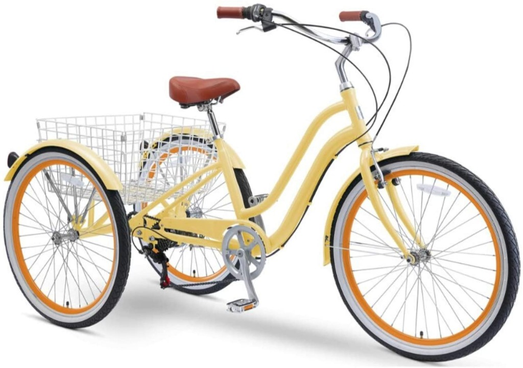EVRYjourney 250W Tricycle, best electric tricycles for adults