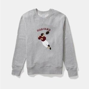 HillFlint Harvard sweatshirt