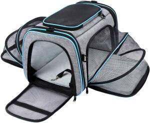 maskeyon pet carrier, how to fly with a dog