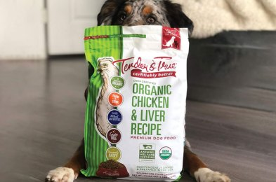 the best organic dog foods for a healthier and happier pooch