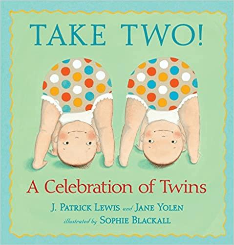 take two twins book