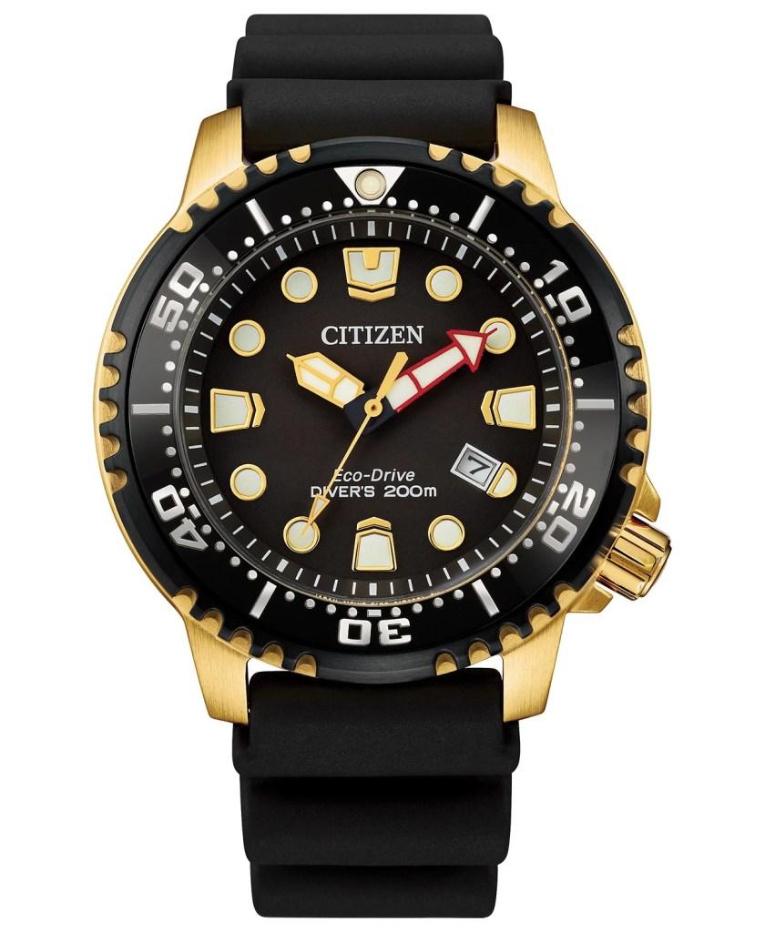 Citizen-Eco-Drive-Professional-Diver-Watch
