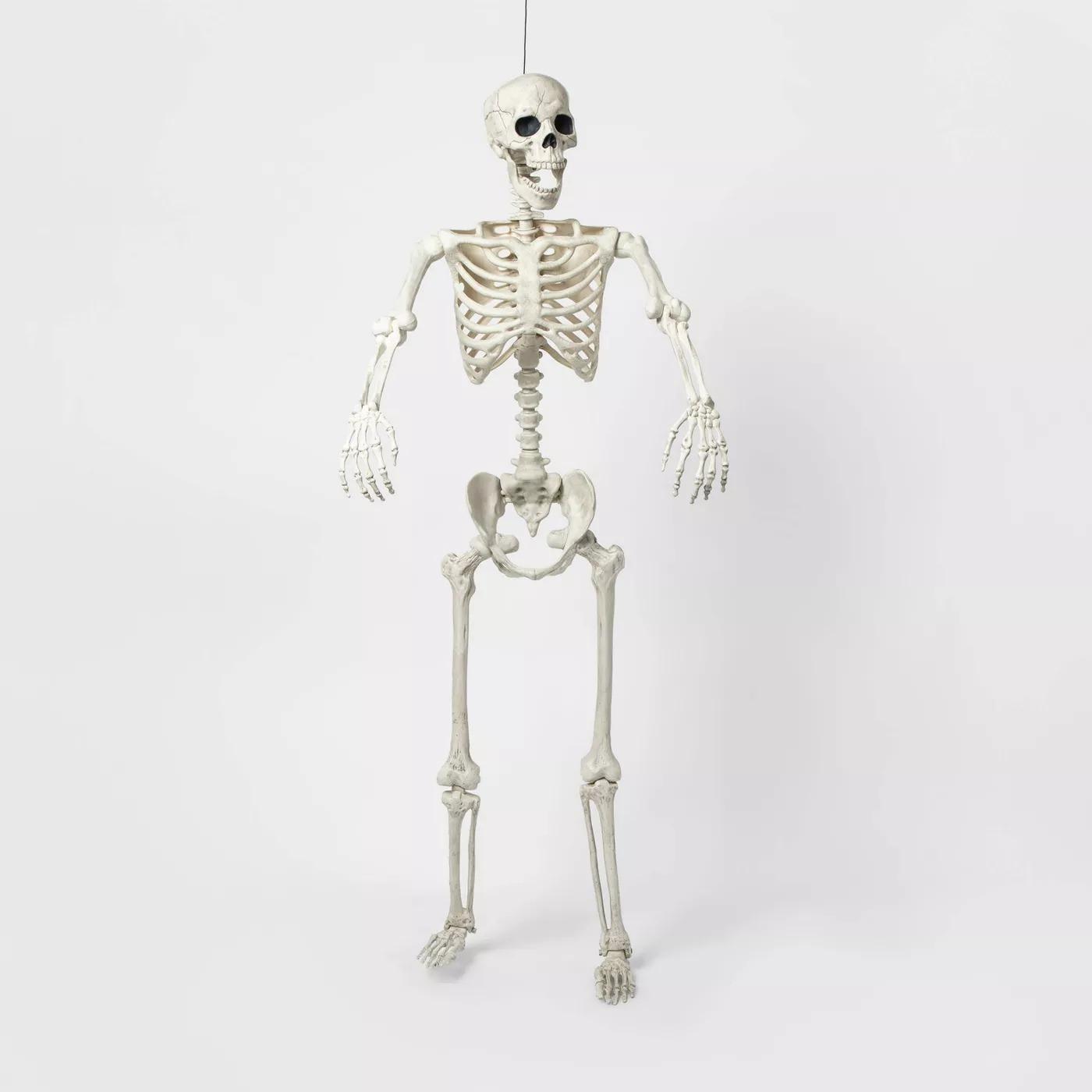 "Hyde & EEK! Boutique 60"" Posable Lifesize Skeleton XL Halloween Decorative Mannequin"