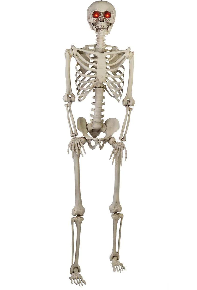 Home Accents Holiday 5 ft. Hanging Plastic Posable Skeleton Decoration
